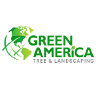 Green America Tree & Landscaping