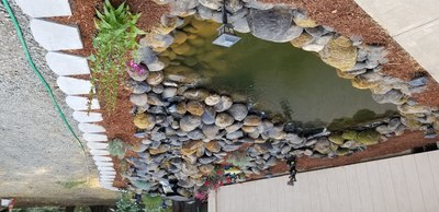 DIY - Water Features